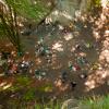 Horolezecký zraz 2014