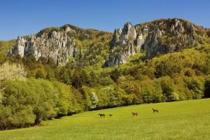 kone jazdenie sulovske skaly