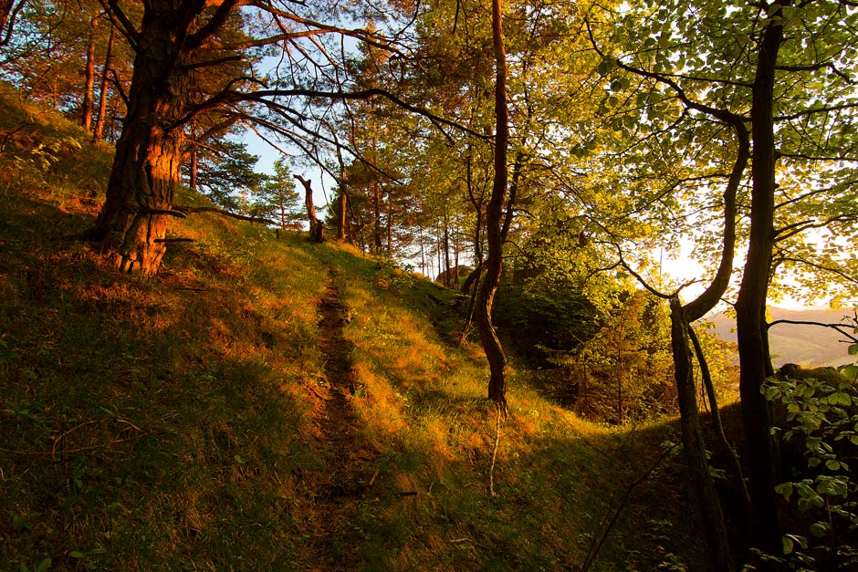 zapad slnka les sulovske vrchy