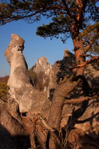 Sulovske skaly hrad