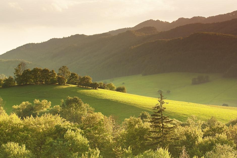 kopec svetlo sulov