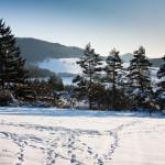 Súľovské vrchy v zime