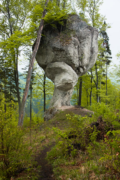 Skalný Budzogáň Súľovské vrchy Žibrid